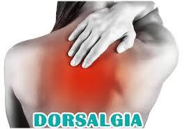 DORSALGIA 3
