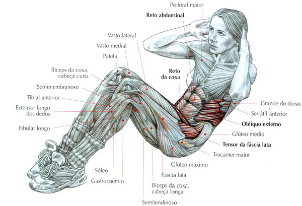 A importância do fortalecimento da musculatura abdominal e da  coluna vertebral na prevenção de patologias