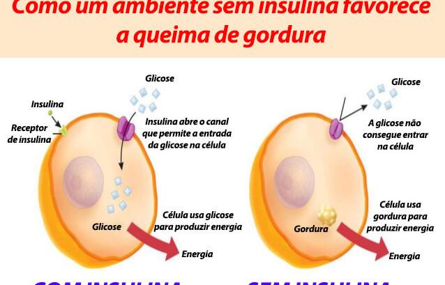 Qual o hormonio que regula o ganho de peso?